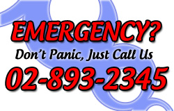 Emergency Number 02-893-2345